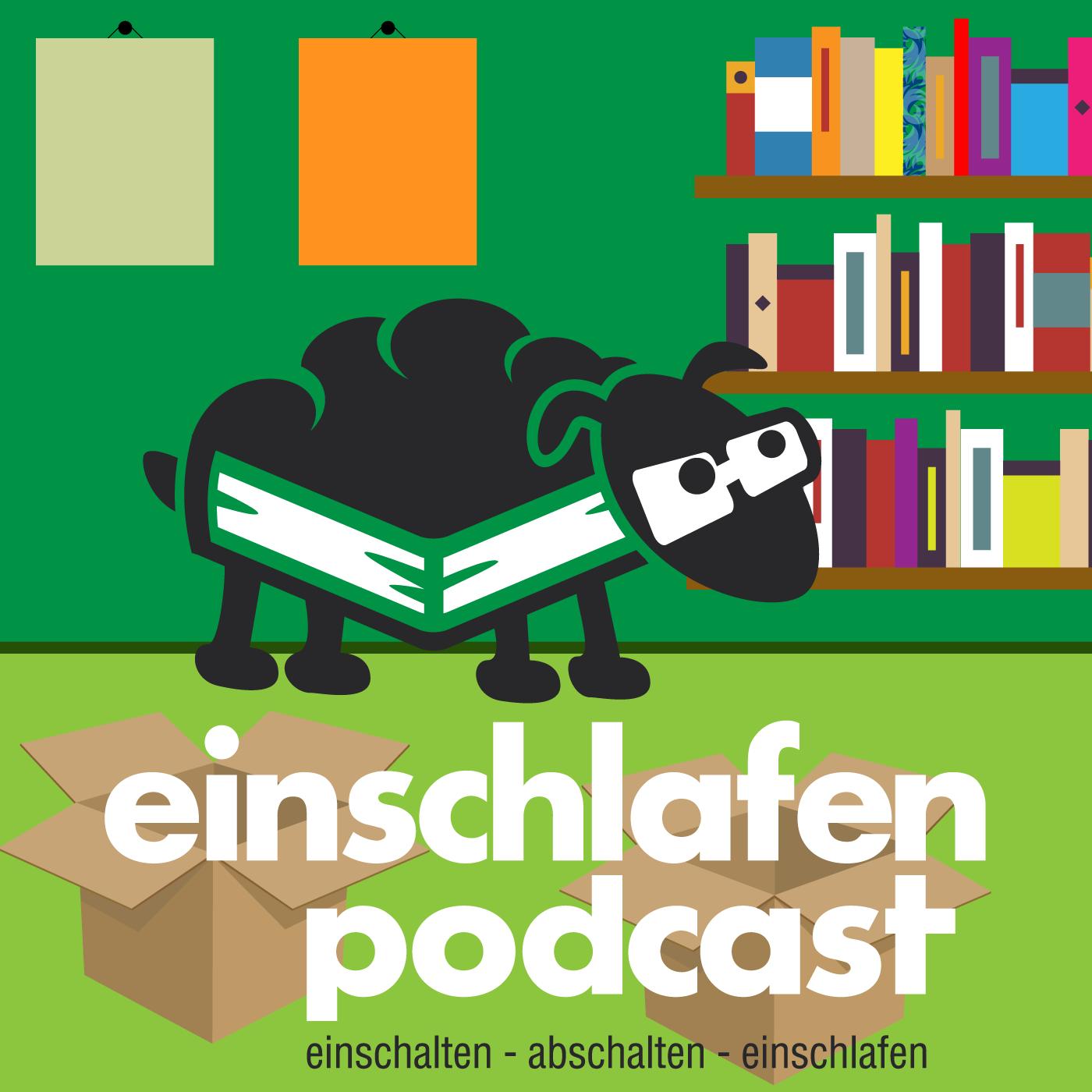EP 301 - Bücher ausmisten und Sherlock Holmes - Episodenbild