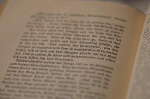 Fraktur Schrift in Niels Holgersen
